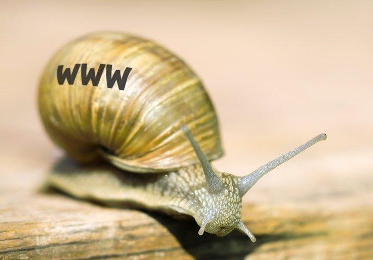 Website Seitenladegeschwindigkeit Schnecke
